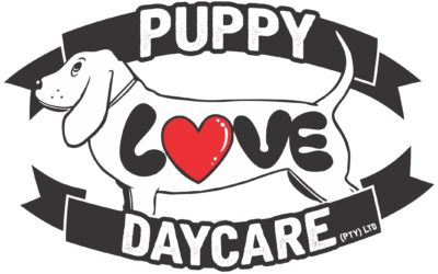 Open Day Doggy Day Care – Protective Workshop
